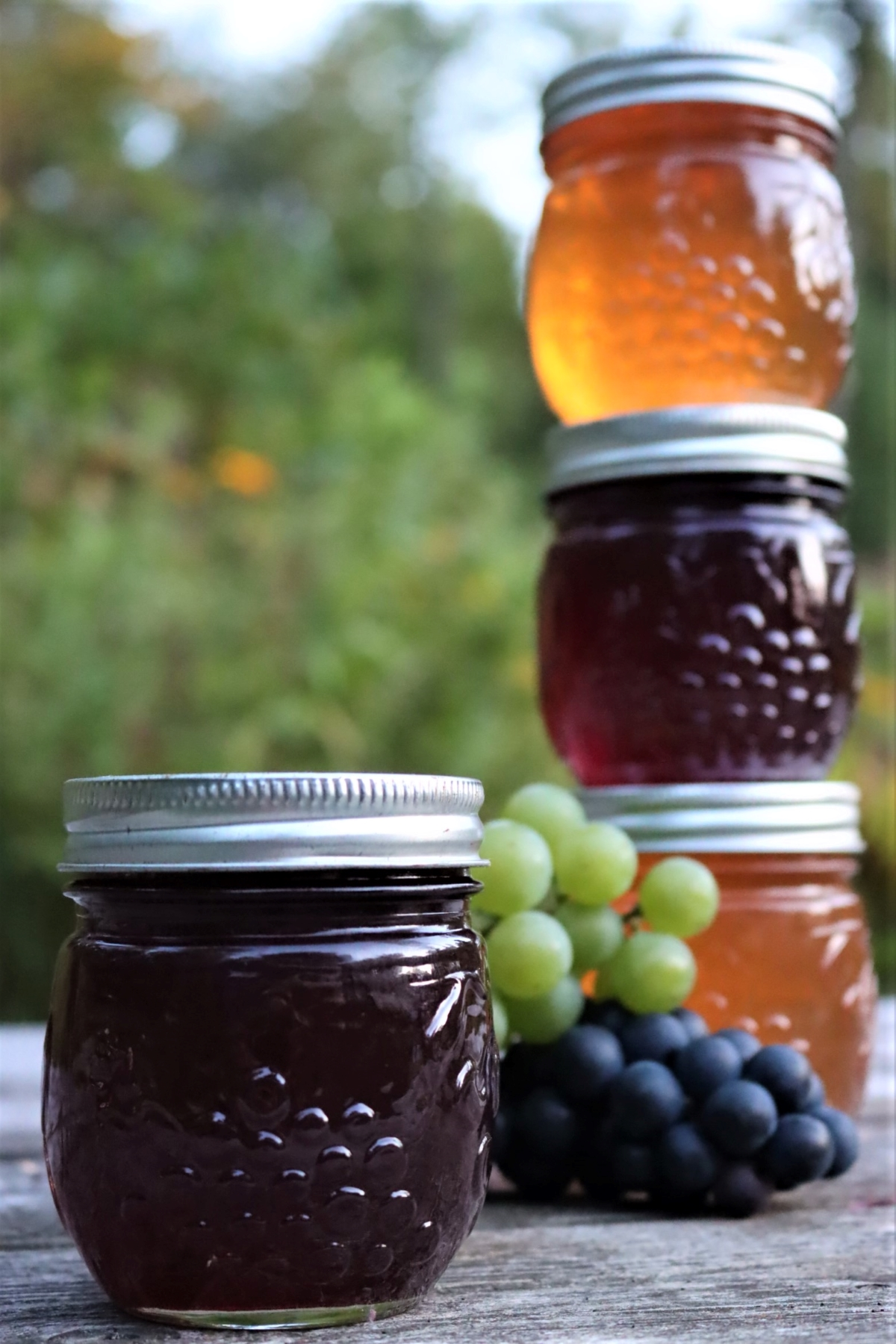 Canning Grape Jelly