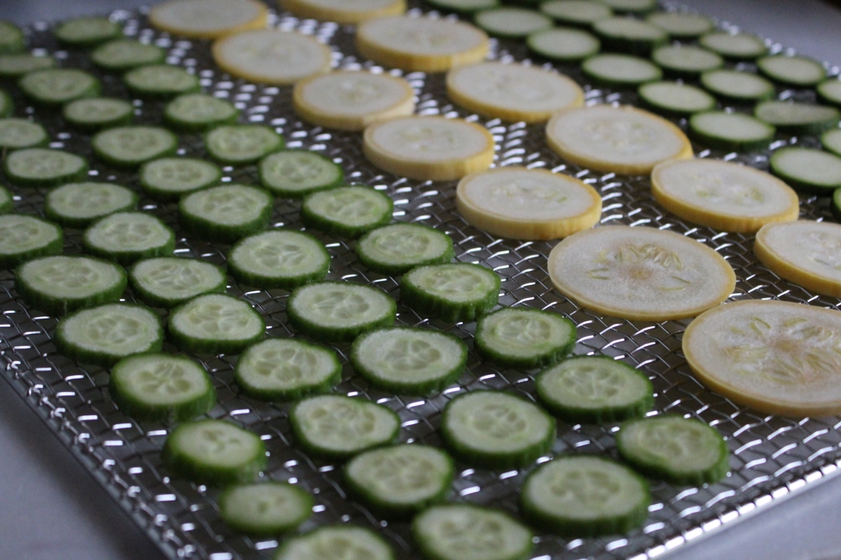 Cucumbers and Squash on Dehydrator Tray