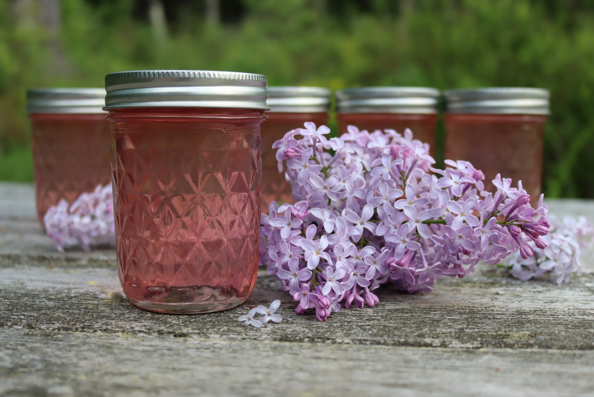 Lilac Jelly