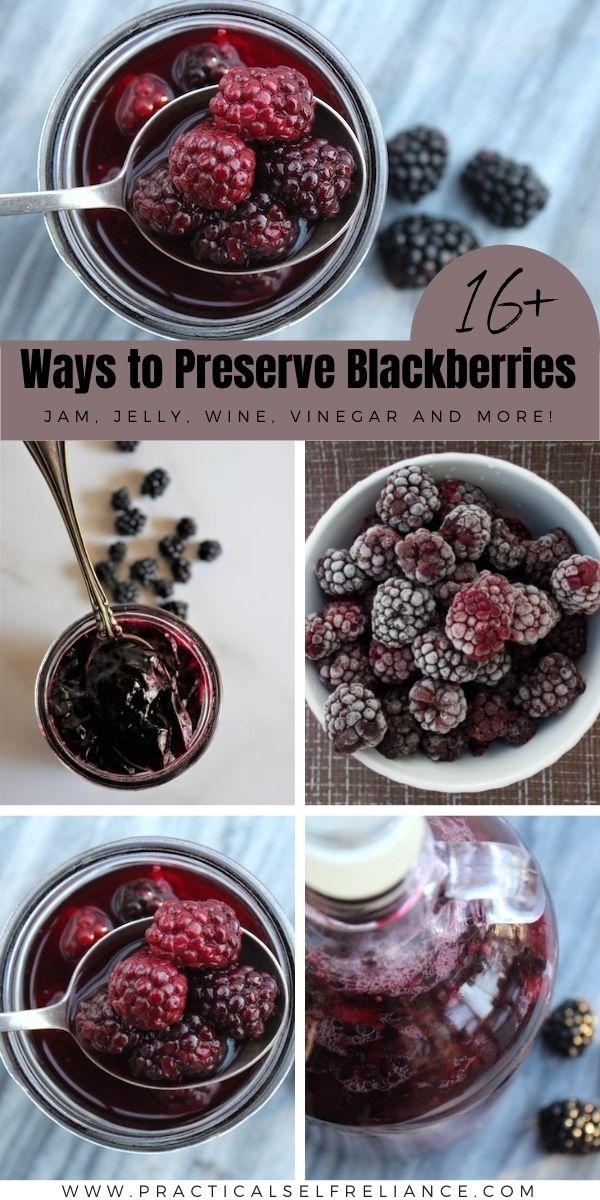 Ways to Preserve Blackberries