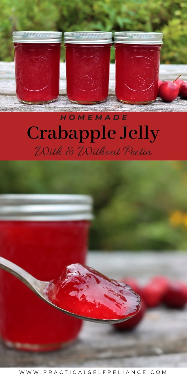 Crabapple Jelly Recipe for Canning