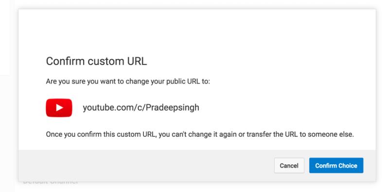 Confirm Choice for Custom YouTube URL