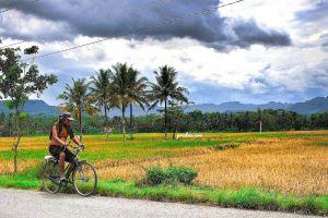 fotografi petani pulang sawah