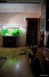 Semka-akvariuma-trebuet-podgotovki
