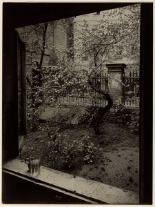 Josef Sudek - The Window of my Studio