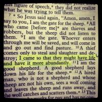 life abundant John 10 10