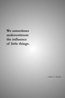 We sometimes underestimate the influence of little things.