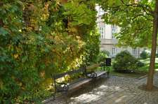 _Prague_bench_fall_5