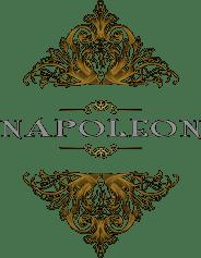 Dort Napoleon Logo