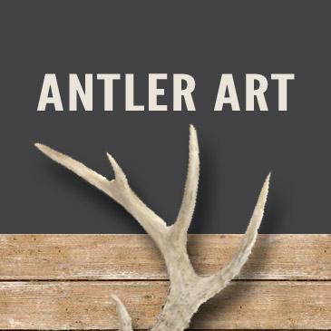 Antler Art