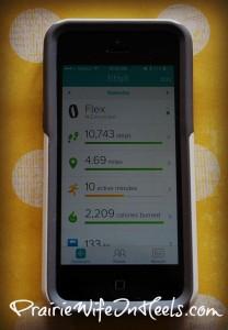 FitBit Dashboard