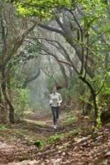 running new trail