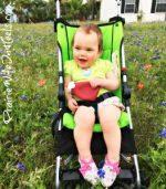 LittleMissH bluebonnets
