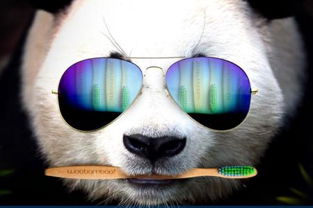woobamboo panda