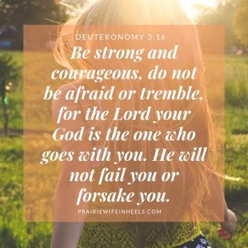 Be strong and courageous, do not be afraid or tremble, for the Lord your God is the one who goes with you. He will not fail you or forsake you.