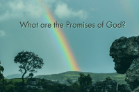 What are the promises of God