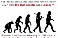 Question-of-Evolution, What Does the Bible Say
