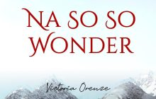 [MUSIC] Victoria Orenze – Na So So Wonder
