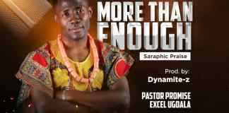 Download Promise Excel - More than Enough