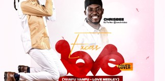 Ddownload: Chris Bee - Excess Love (Cover)