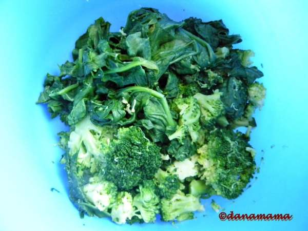 spanac cu broccoli