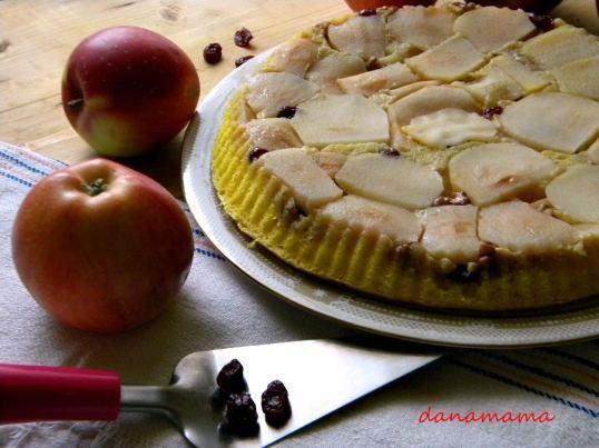 tarta cu mere5