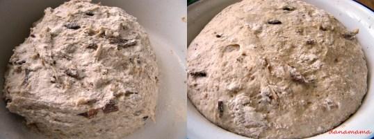 paine cu hribi3