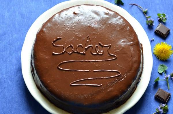 Tort Sacher7