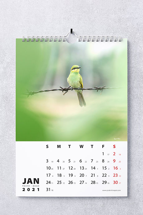 Prakritinepal Blog Calendar 2021 - January