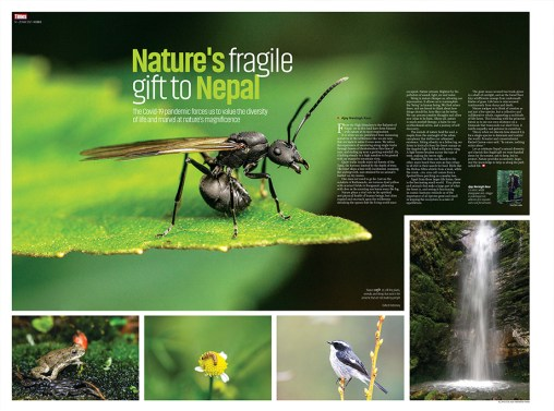 Nature's fragile gift to Nepal