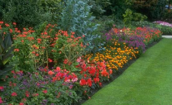 Ελληνικά sites για κήπο-κηπουρική-κηπουρό