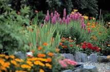 Ο κήπος το Μάιο