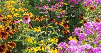 Ημερολόγιο κήπου - Ιούλιος