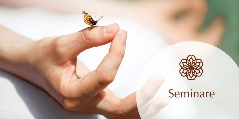 Prana Jio Seminare und Workshops