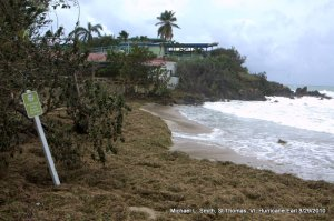 Photo: beach covered with storm-driven debris
