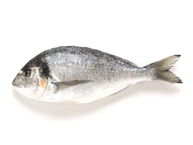 poisson1