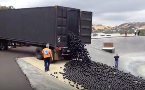 This Truck Dumping Plastic Balls into LA River. Find Out Why.