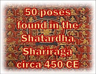 Shatardha Shariraga
