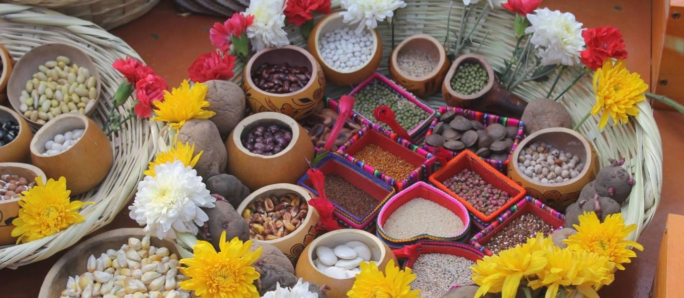 3°Watunakuy: Fiesta de intercambio ritual de diversidad de semillas en Puruchuco