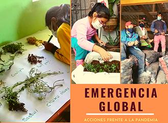 Info-emergencia-global