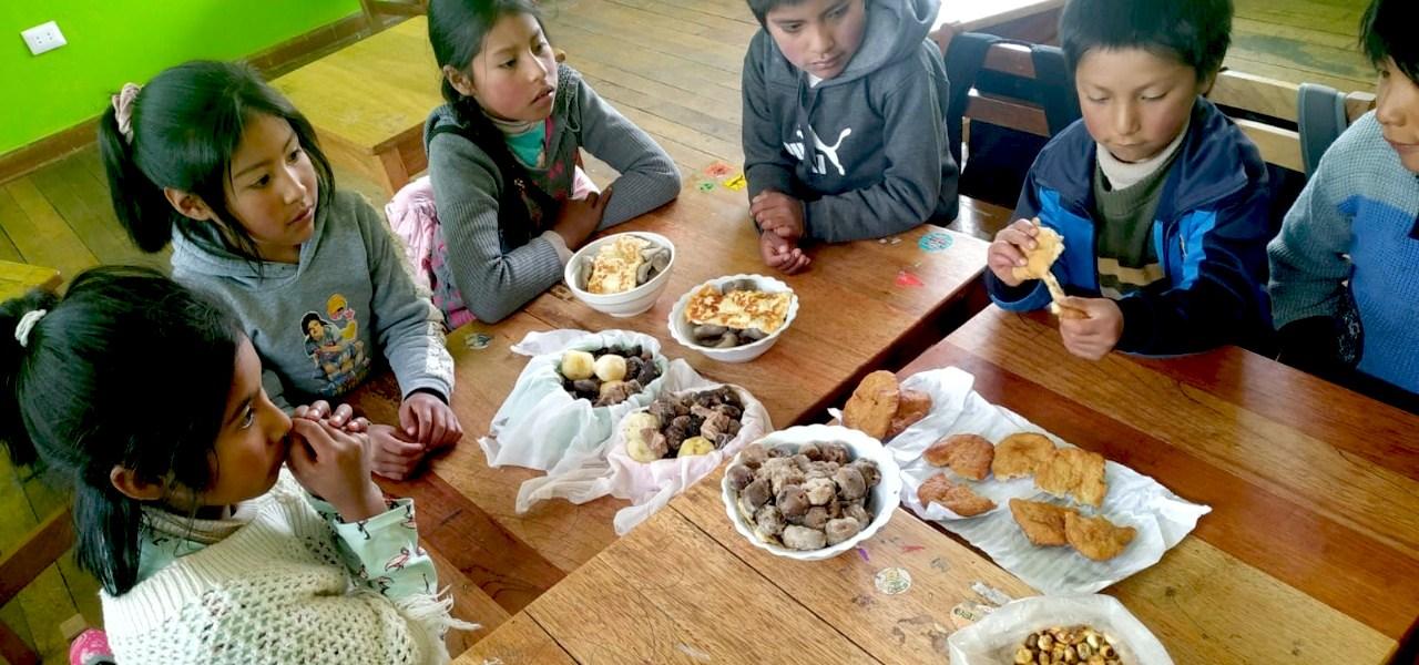 El qatichi: una modalidad de crianza de la agrobiodiversidad por los niños