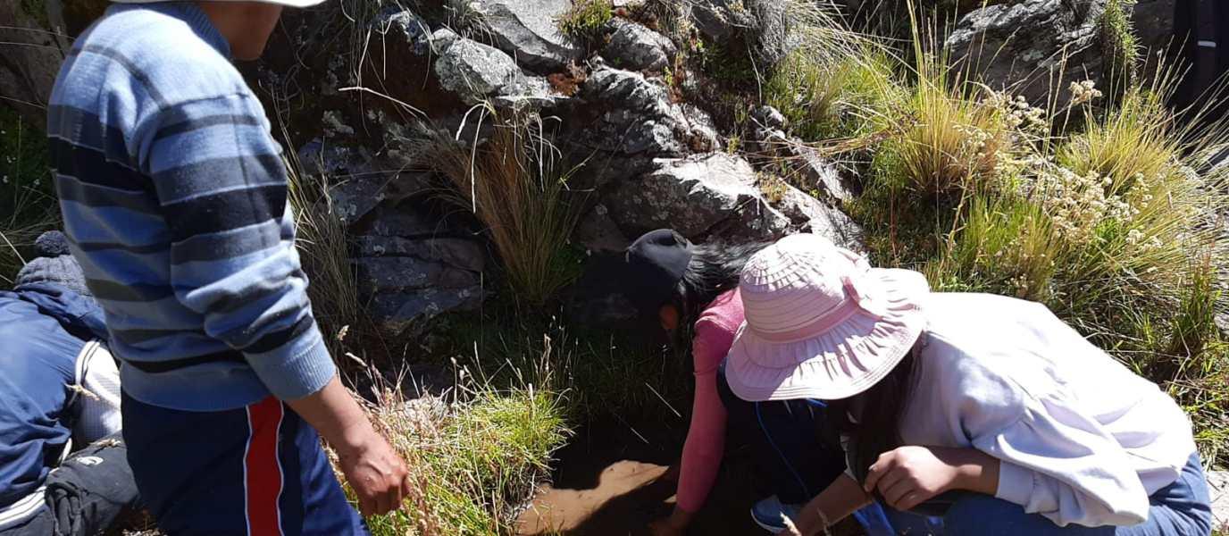 Puno: Jóvenes aymaras recuperan los ojos de agua ancestrales