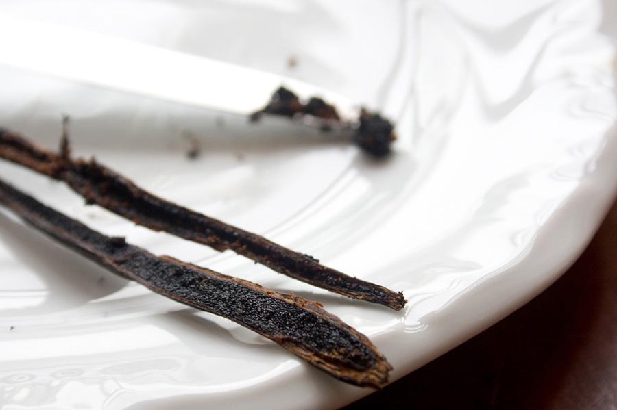 Ingredientes: Fava de Baunilha - Como Comprar