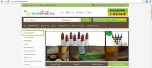 Shopping Reviews – Ecotokri  – the organic e-retail store {Brand Review}
