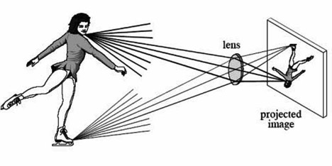 Beginner's Guide to Understand Lens Structure