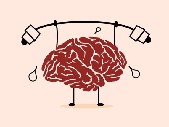 ahorita cerebro