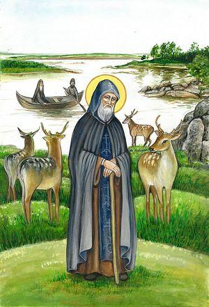 Преподобный Никодим Кожеозерский. Рисунок http://kozhozero.ru