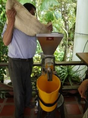 Don_Monolo_coffee_plantation_Pereira_Colombia.JPG