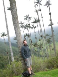 Waxy_palms_Salento_Colombia.JPG