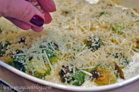 Sprouts gratin cheese